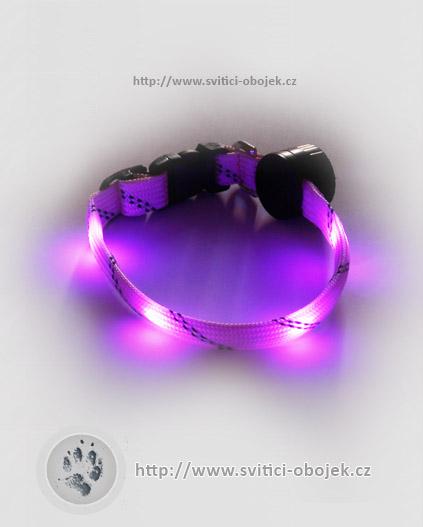 Svítící obojek pro malé psy - Růžový