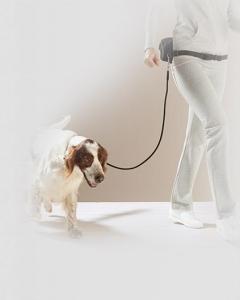 Vodítko na běhání se psem Tchibo